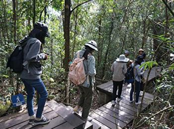 สาขาวิชาวิทยาศาสตร์สิ่งแวดล้อม ลงพื้นที่ศึกษาธรรมชาติ รายวิชาการจัดการสิ่งแวดล้อมเพื่อการท่องเที่ยวเชิงนิเวศ ณ อุทยานแห่งชาติเขาใหญ่
